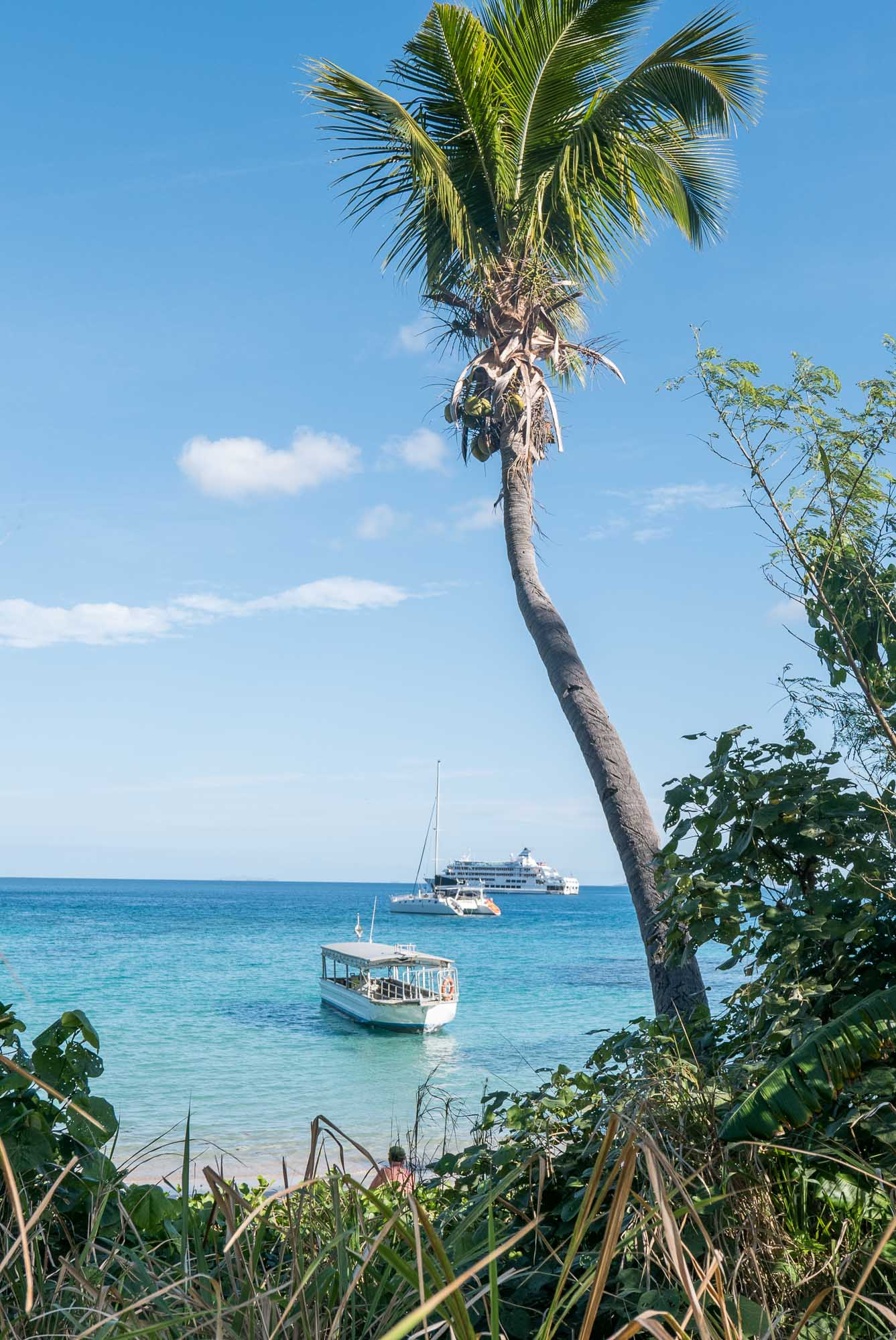COCONUTS, KAVA AND CRAB RACES IN FIJI