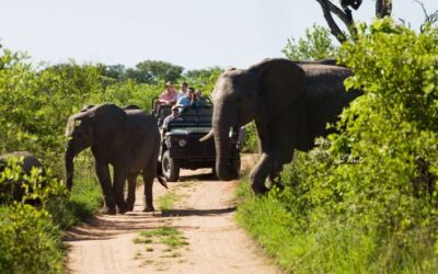 Five places to visit in South Africa