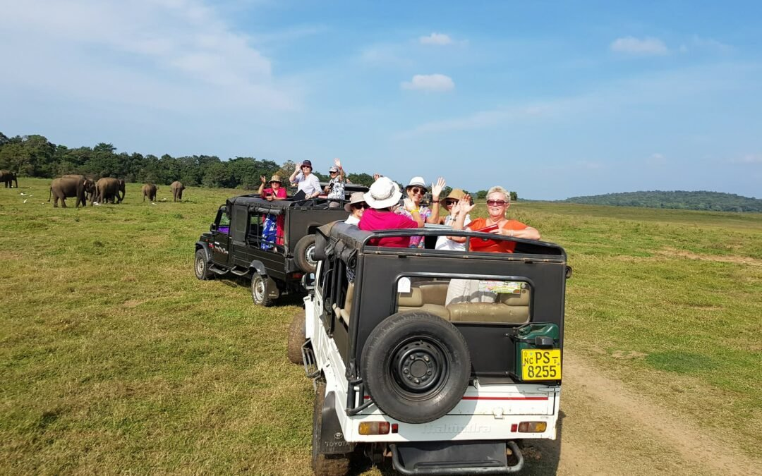 How to choose a wildlife safari that's right for you